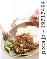 タイ料理のラープ 19717494