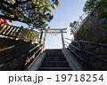高知県高知市 桂浜 海津見神社 鳥居 19718254