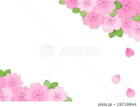 綺麗かわいい桜のイラスト素材コピースペース横長 透過png白背景