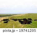 放牧 19741205