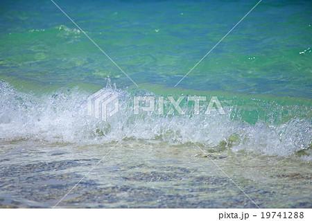 阿嘉島 波間 19741288