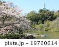 暖かい春の成田山公園 19760614