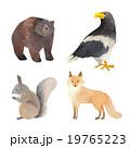 北海道 動物シリーズ クマ・ワシ・リス・キツネ 19765223