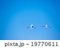 青空をゆく 19770611