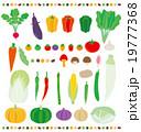 野菜 19777368