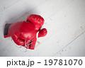 ボクシンググローブ 19781070