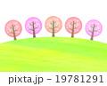 桜並木 19781291