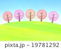 桜並木 19781292