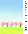 桜並木 19781316