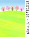 桜並木の丘 19781318