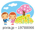 桜と菜の花と一年生 19788066