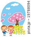 菜の花と桜と一年生 19788094