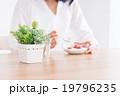 若い女性(朝食) 19796235