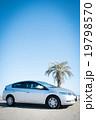 車 自動車 ビーチの写真 19798570