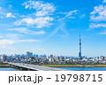 スカイツリーと東京の街並み 19798715
