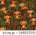 さる サル 猿のイラスト 19802559