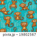 さる サル 猿のイラスト 19802567