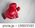 ボクシンググローブ 19803585