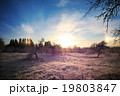 Cold winter landscape with sunset and blue sky 19803847