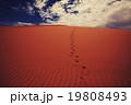 Sand dunes 19808493