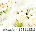 背景 花 バラのイラスト 19811838