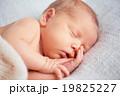 新生児 ベビー 赤ちゃんの写真 19825227