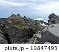 鳥海山 出羽富士 鳥海国定公園の写真 19847493