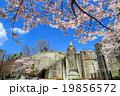 桜咲く宇都宮市・大谷観音 19856572