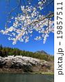 桜咲く宇都宮森林公園と古賀志山 19857511