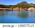 宇都宮森林公園の桜と古賀志山 19857515