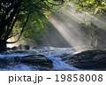 菊池渓谷 19858008