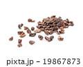 カカオニブ: Cacao nibs (Cocoa nibs) 19867873