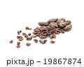 カカオ豆とカカオニブ: Cacao Beans & Nibs (Cocoa Beans) 19867874