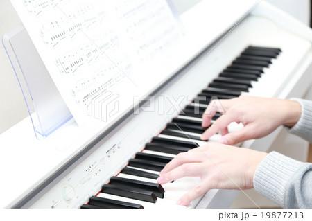 ピアノ 楽器 音楽 (オルガン チェンバロ ハープシコード MIDI シンセサイザー 鍵盤) 19877213