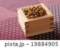 大豆 19884905