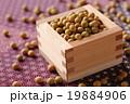 大豆 19884906