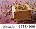 大豆 19884909