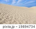 鳥取砂丘 19894734