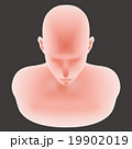 19902019