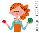 野菜を持ったエプロン姿の女性 19903972