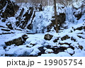 藤沢渓流 渓流 風景の写真 19905754