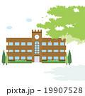 学校 19907528