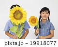 ポートレート ひまわりと小学生男女2人 19918077