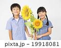 ポートレート ひまわりと小学生男女2人 19918081