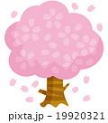 桜の木A 19920321