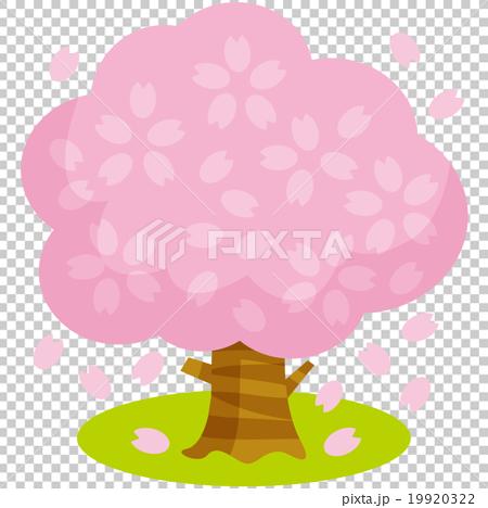 桜の木B 19920322