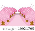 桜並木バリエーション横ピンク 19921795
