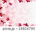 桜 背景 花のイラスト 19924795