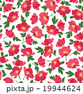 花 ポピー 花柄のイラスト 19944624