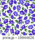花 ポピー 花柄のイラスト 19944626
